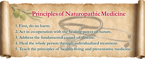 Principles of Naturopathy Medicine